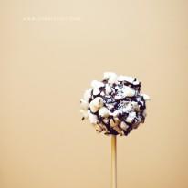 Cake Pop Photo
