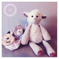 Special Stuffed Animals