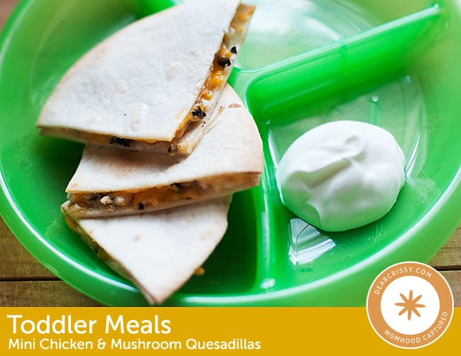 Mini Chicken and Mushroom Quesadillas