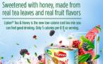 Lipton Tea & Honey