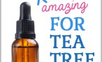 tea-tree-oil-uses11