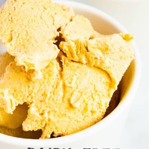 Dairy-Free Pumpkin Ice Cream