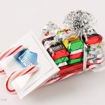 diy-candy-can-sleigh-8