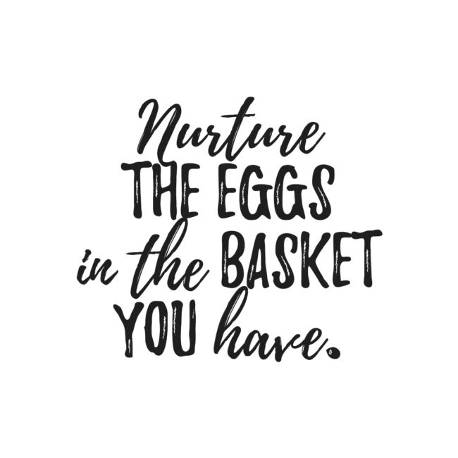 Nurture The Eggs In The Basket You Have