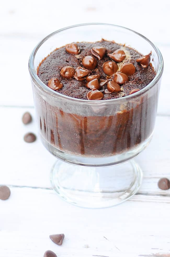 Double Chocolate Peanut Butter Mug Cake - The perfect dessert for one that you can make right in your microwave. Tried it, loved it.