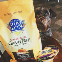 Nature's Recipe Dog Food Available at Walmart
