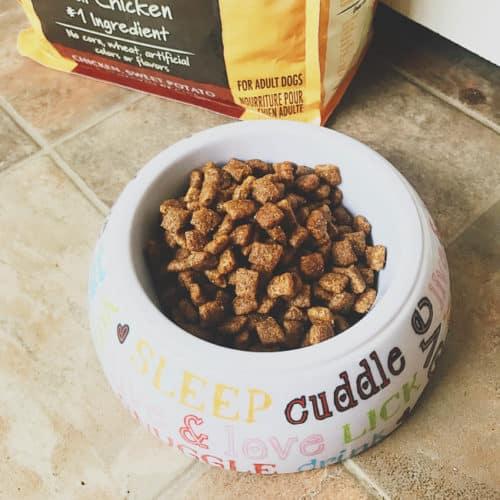 Nature's Recipe Dog Food Available at Walmart