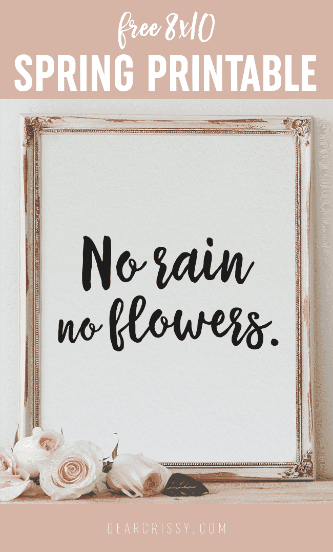 Free Printable Quote 8x10 | Spring Quote | No Rain No Flowers