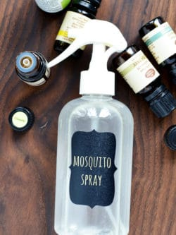 DIY Mosquito Repellent Spray - This easy homemade bug spray is a great way to keep disease carrying mosquitos and other insects away this summer.
