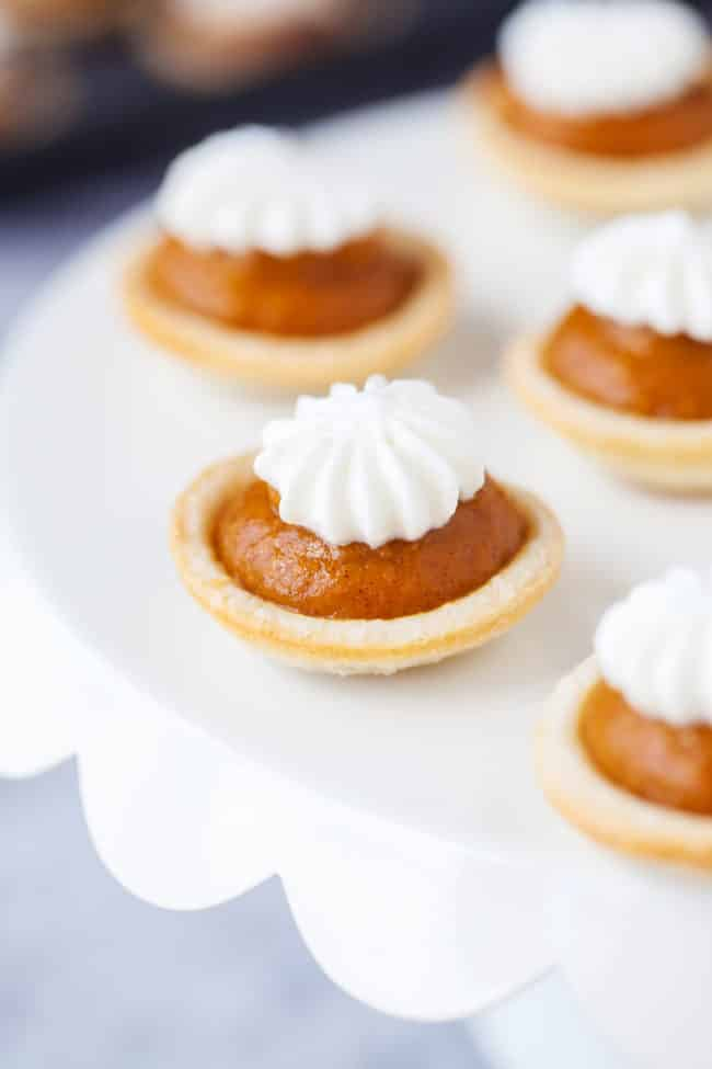 Mini Pumpkin Pies Recipe - These miniature pumpkin pies are easy to make and taste amazing!