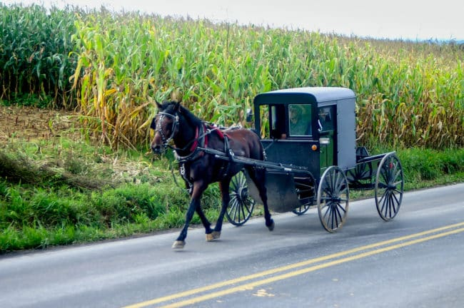 Horse and Buggy in Amish Country.