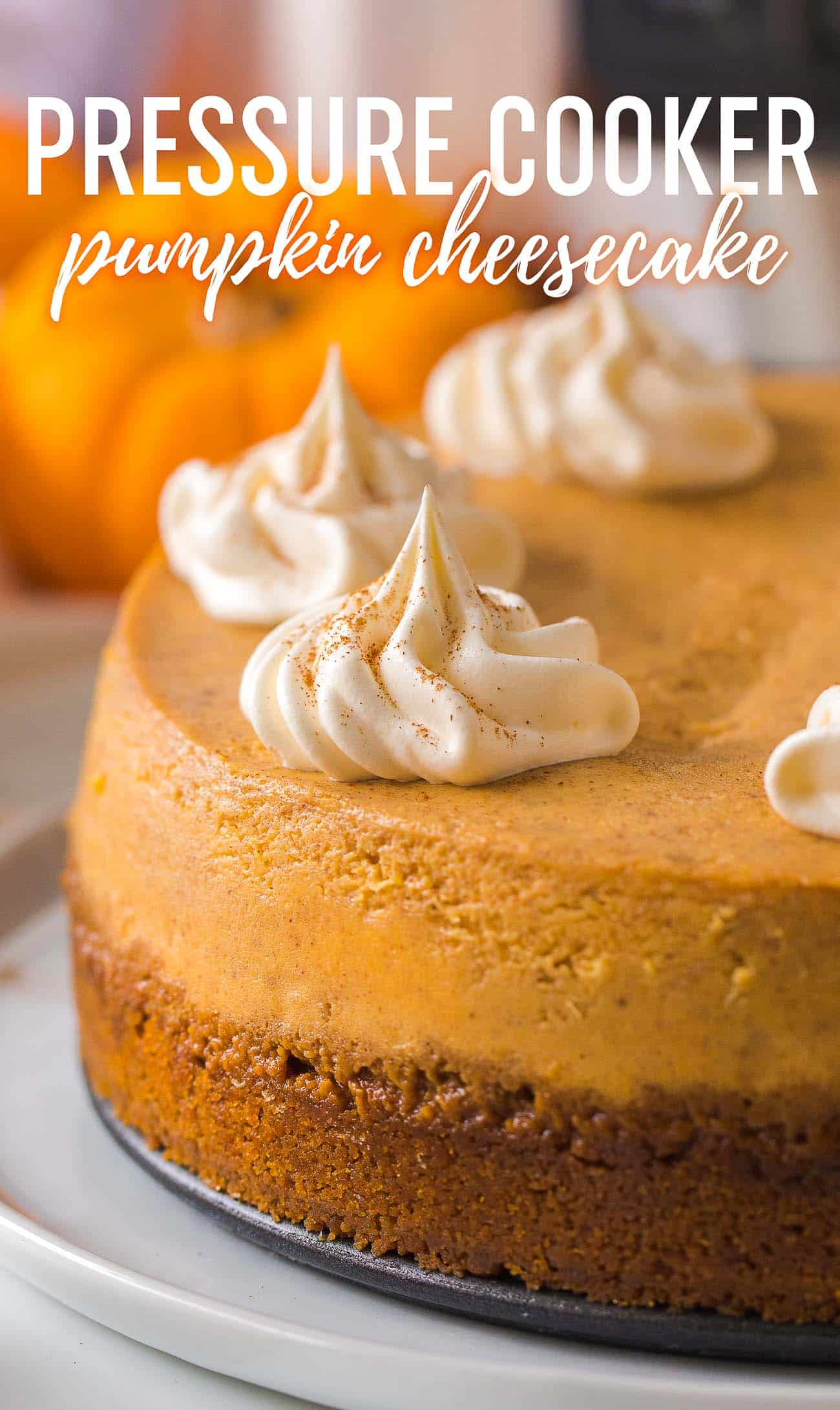 Pressure Cooker Pumpkin Cheesecake Recipe - Easy pressure cooker pumpkin cheesecake!